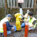 Thank You to the Fire Hydrant Painting Volunteers